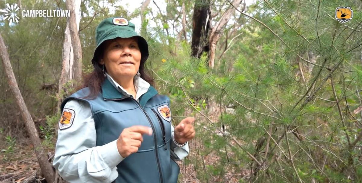 Photo of NSW National Parks Discovery Ranger