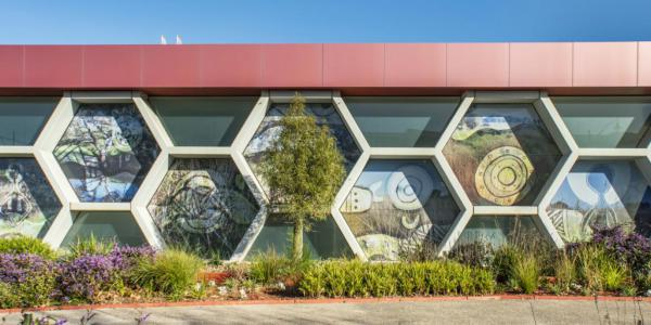 Healing exhibition, Melton Arts, CS Gallery Window Commission, Mandi Barton, Aboriginal art